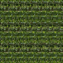 "At Home (Wallpaper Border: Sansevieria trifasciata), autostereogram, 2014, 10""x8.5"""
