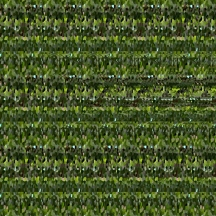 "At Home (Wallpaper Border: Chlorophytum comosum), autostereogram, 2014, 10""x8.5"""