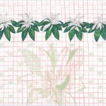 "Sapota Study #1, pencil, gouache and coloured pencil on rag paper, 2017, 11""x15"""